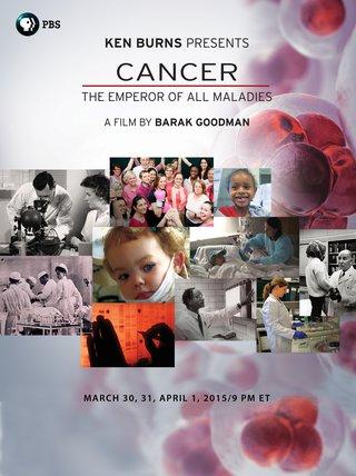 Cancer Signature Image_1-6-15.jpg