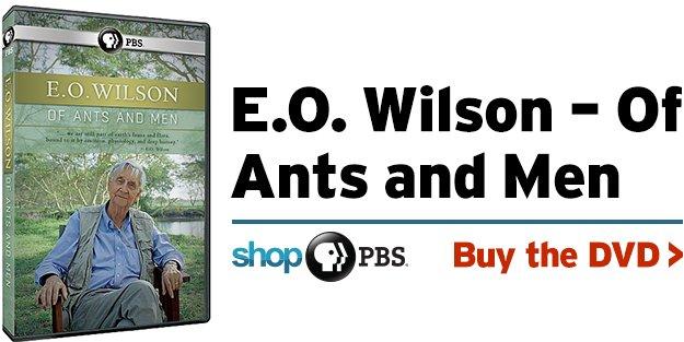 Shop PBS: E.O. Wilson – Of Ants and Men (DVD)