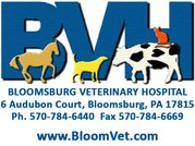 BVH logo (CS document header).jpg