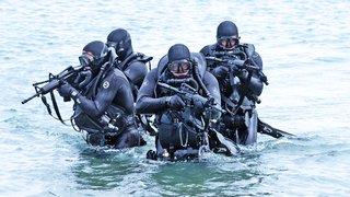 SEAL Team TWO L to R:  Gordy Boyce, Dennis Drady, Wally Schwalenberg and Silver (dog).
