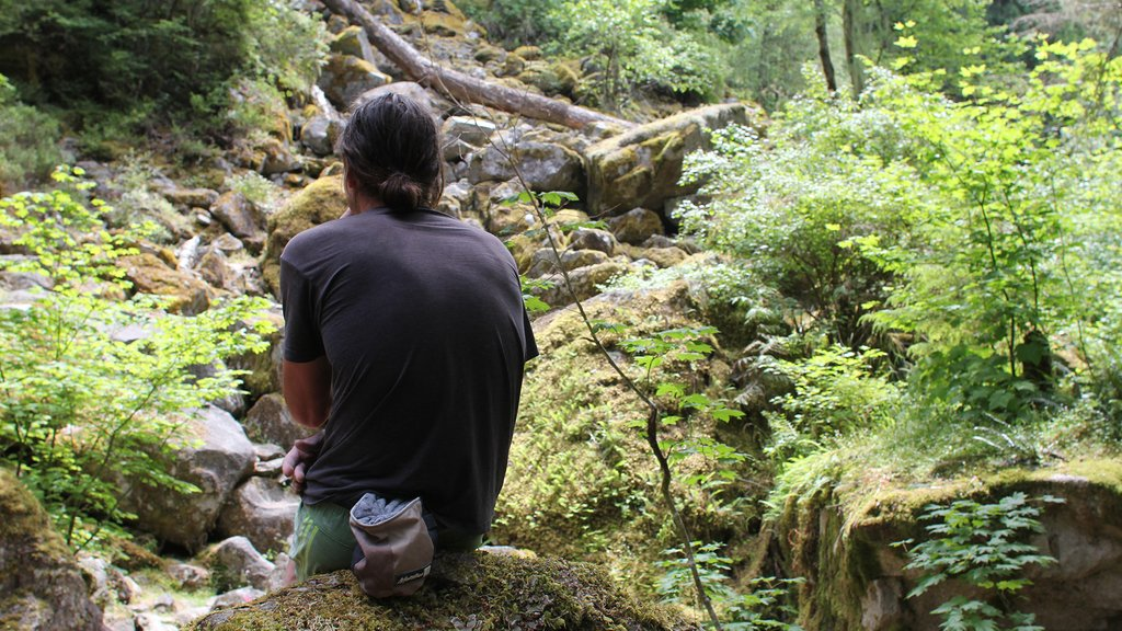 Dean Potter thinks at a possible climb site at Canada's Squamish National Park.