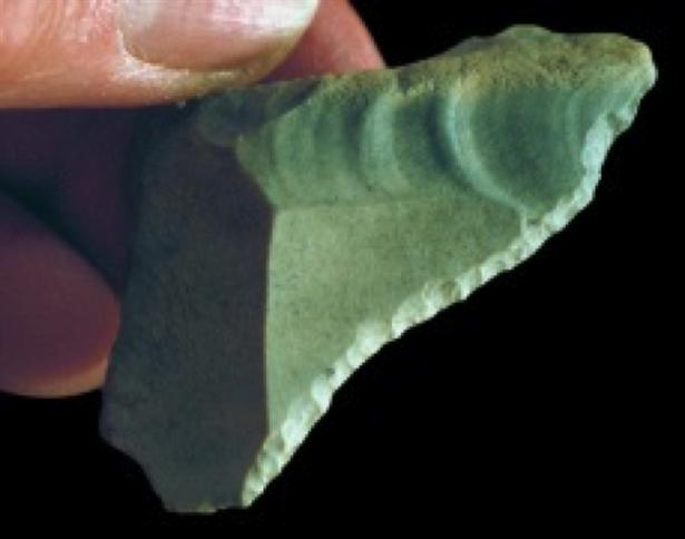 Cactus Hill Site: Pre-Clovis Scraper