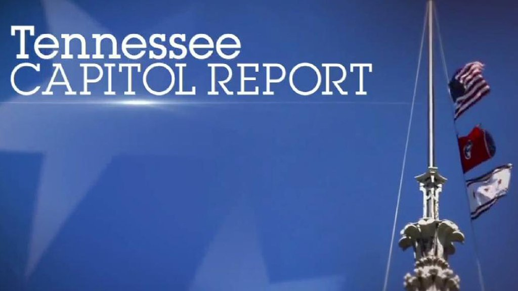 2017 Tennessee Capitol Report