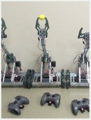 Robot Petting Zoo