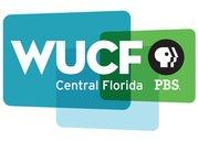 WUCF_CF_bug.jpg