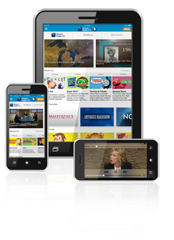Sample screens of the DPTV Mobile App