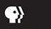 PBS logo image