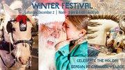 Winter Festival at the historic Carousel Village