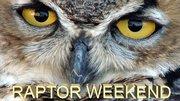 Raptor Weekend
