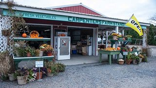 Carpenters Farm