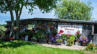 Manfredi Farms