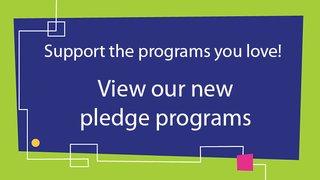 New Pledge Programs
