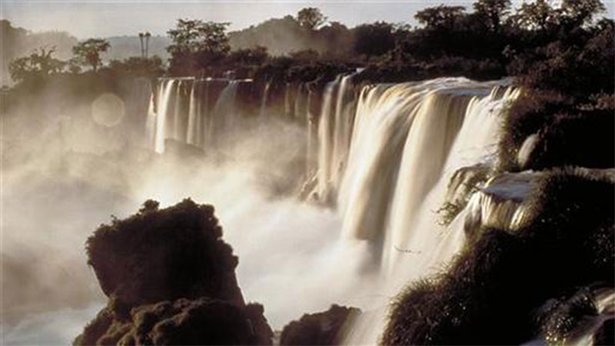 Wild South America
