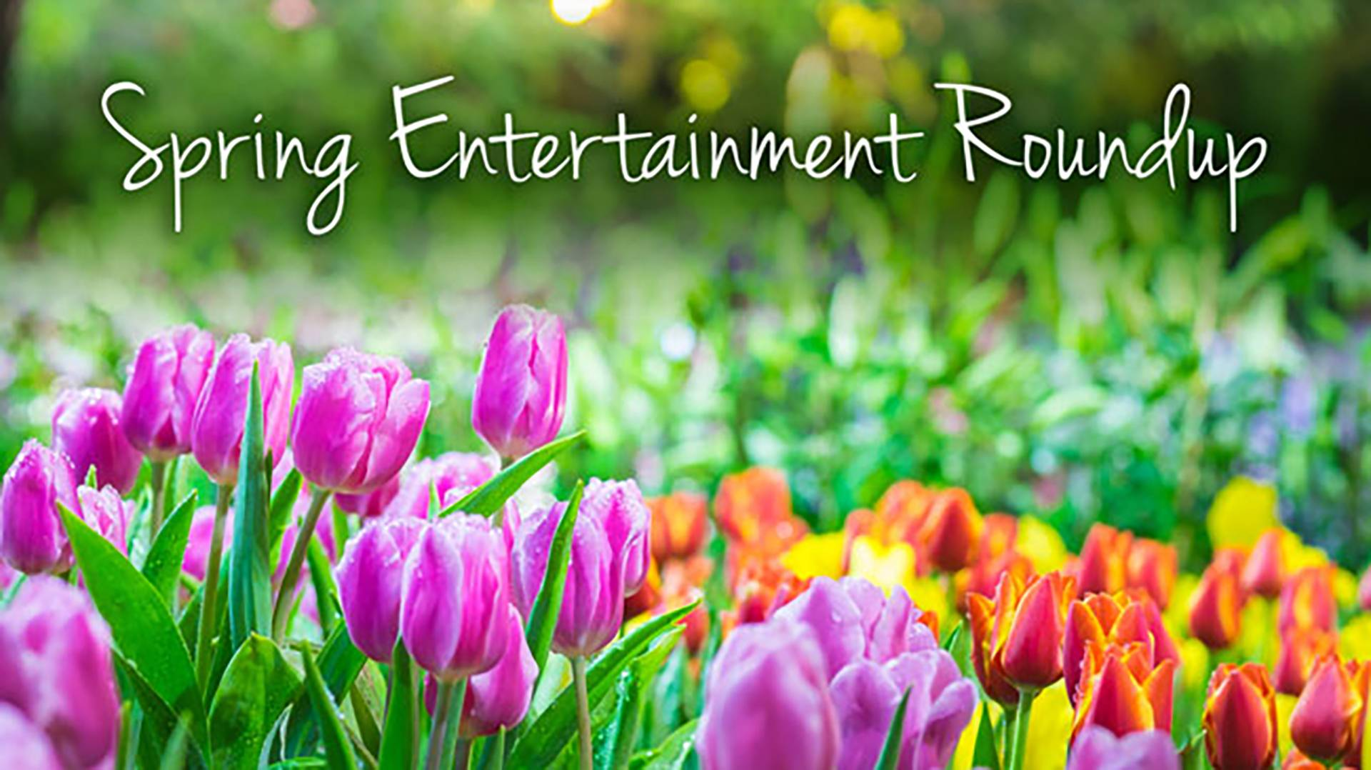Spring Entertainment Preview