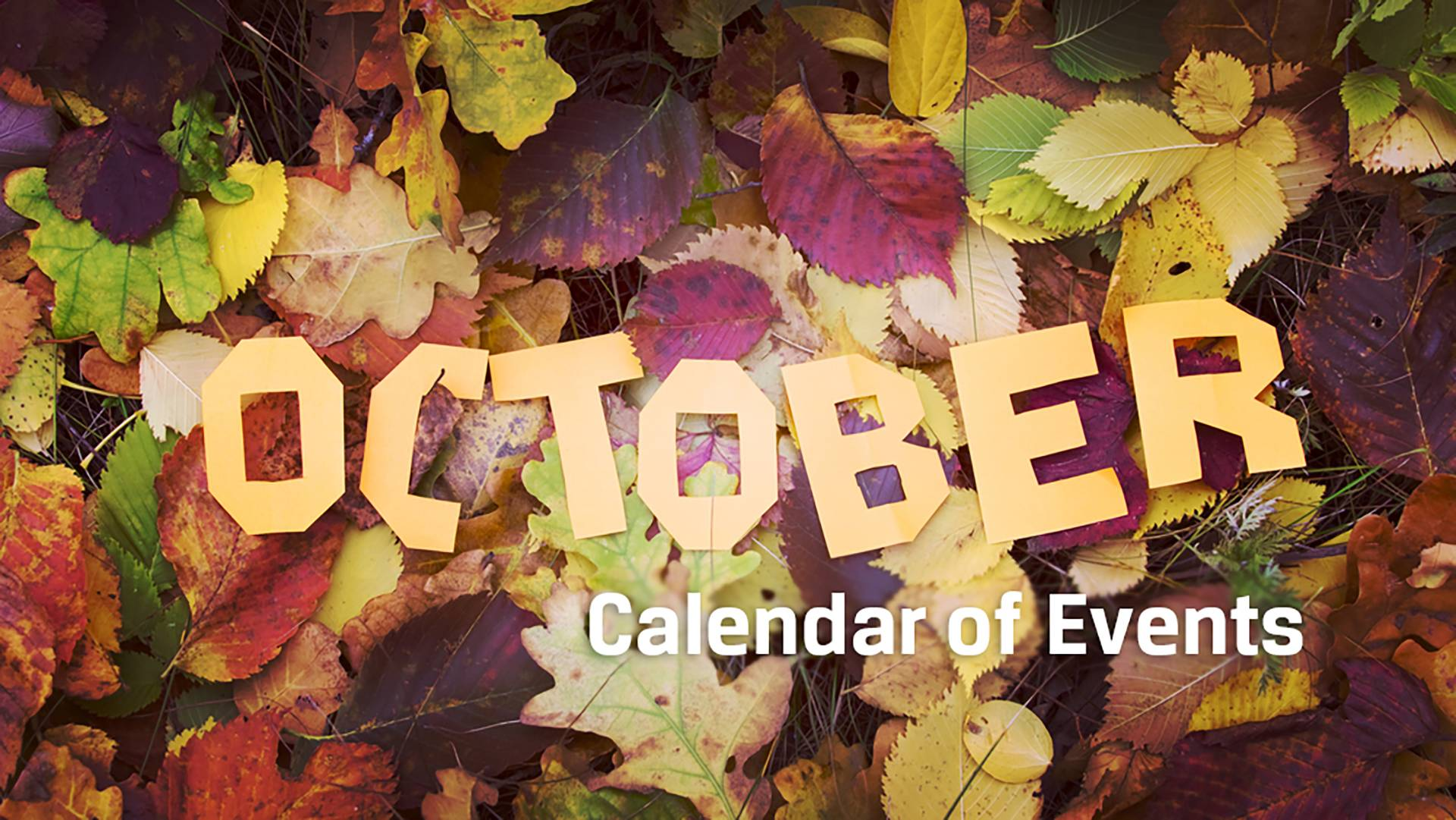 october entertainment calendar: comprehensive guide to halloween