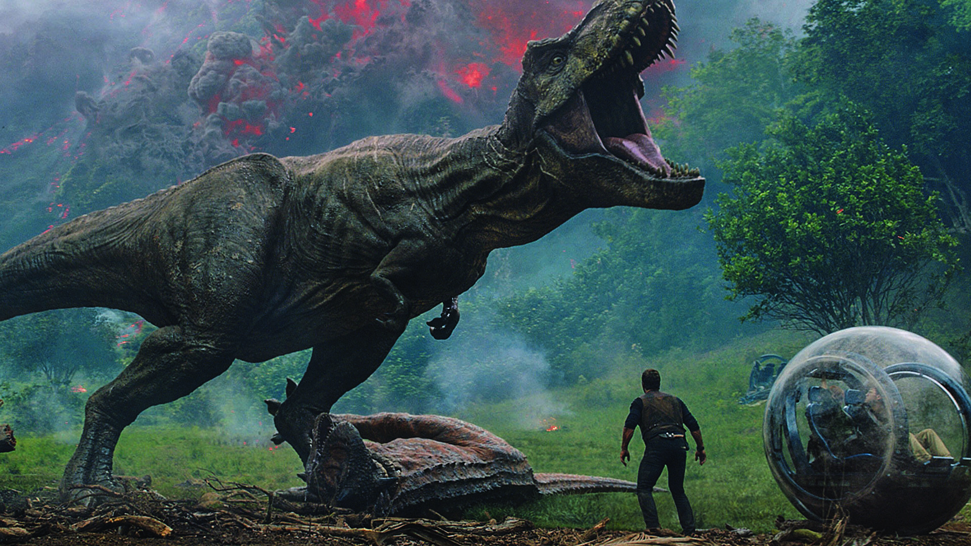 3e9b449d1 Movie Watch: Amarillo film options for June 21 to 28, with 'Jurassic Park,'  special screenings, more