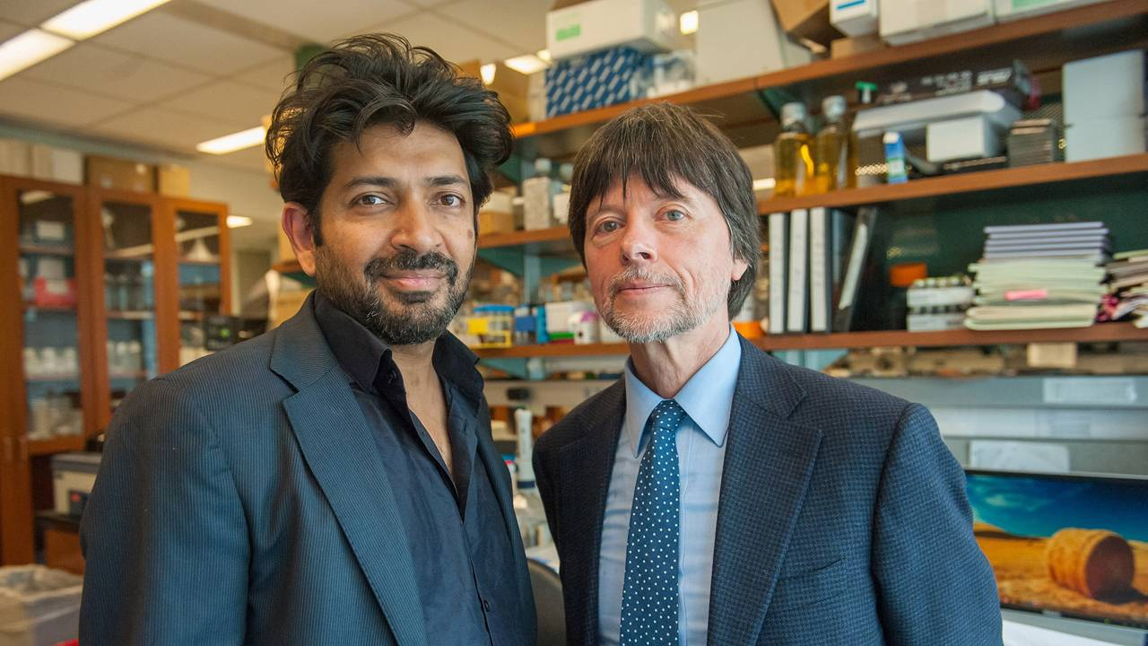 New Documentaries 2020 PBS Announces KEN BURNS PRESENTS THE GENE: AN INTIMATE HISTORY