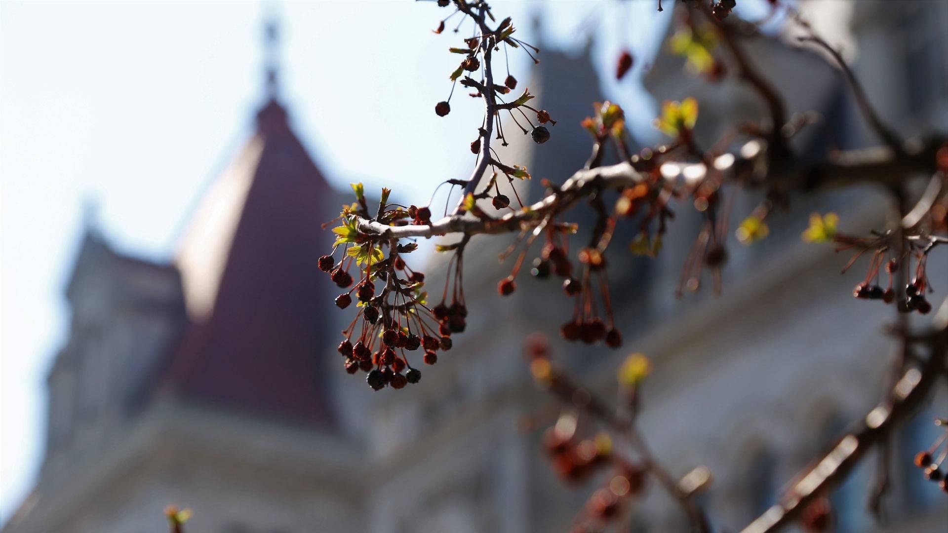Merit Scholarship expanded after GOP pushback
