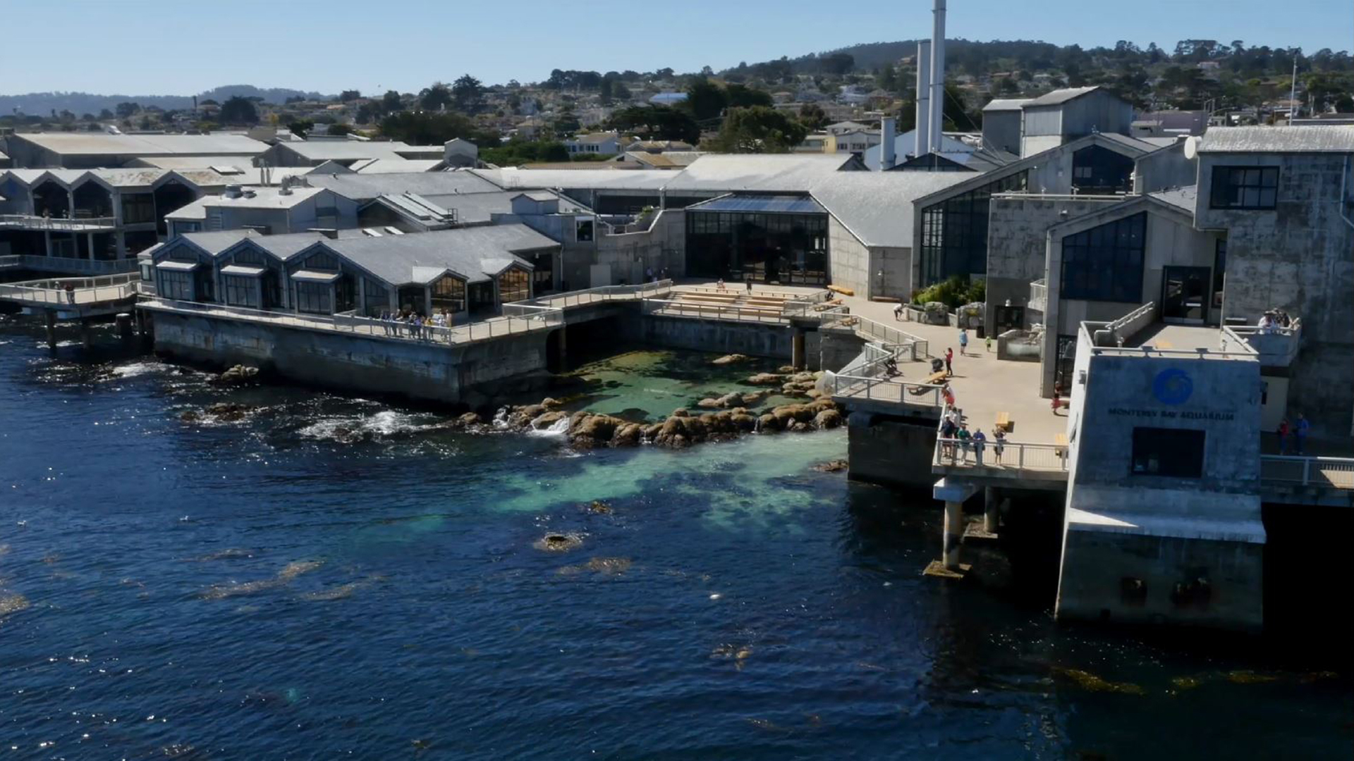 Monterey Bay Aquarium Bay Cam