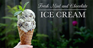 Fresh Mint & Chocolate Ice Cream