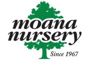 Moana Nursery