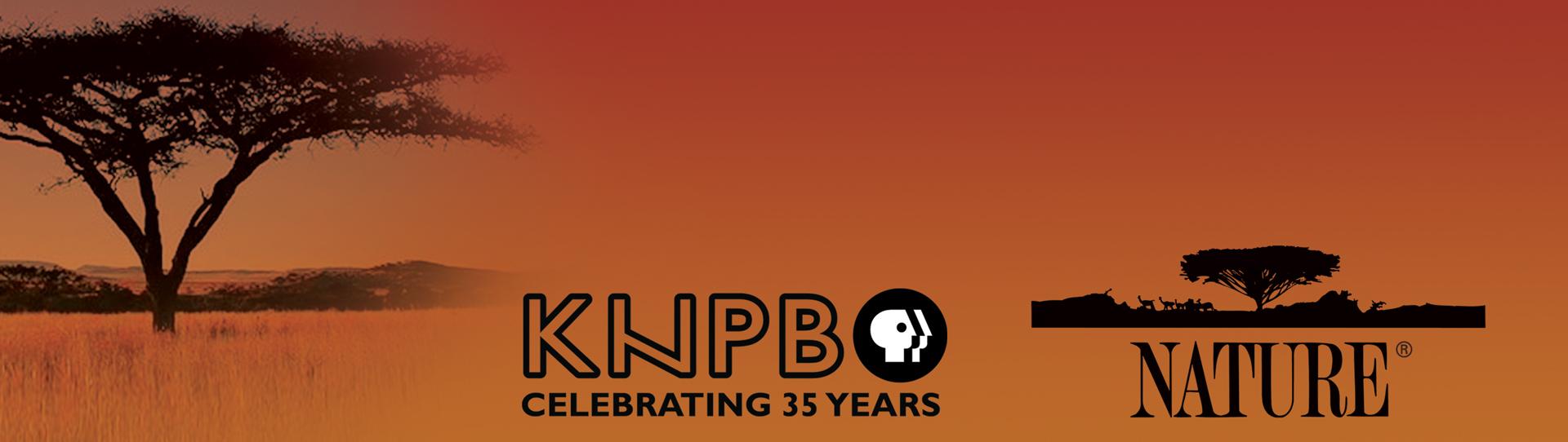 Nature-KNPB-header2[459].jpg