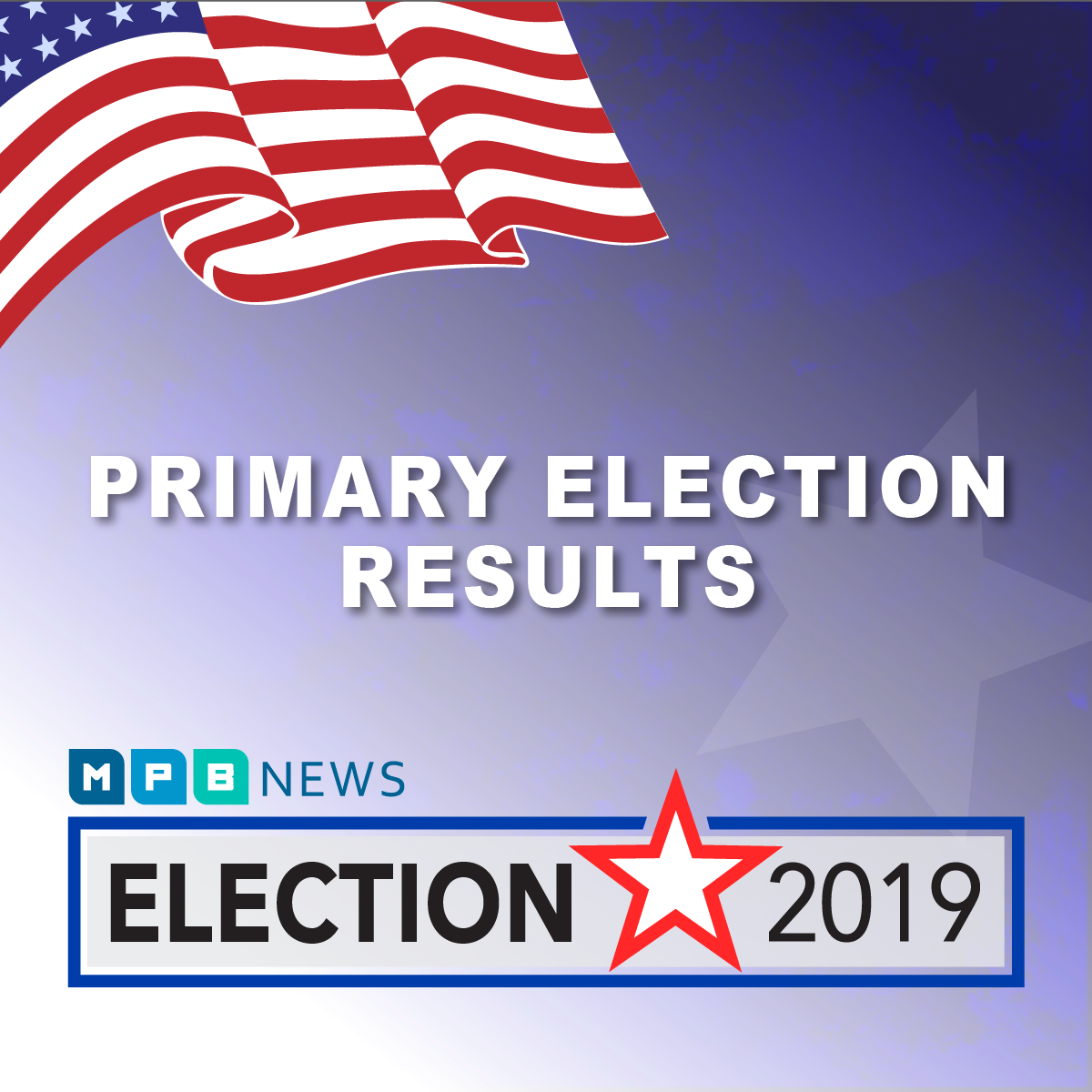 Election 2019 Web Ads primary square-01.png