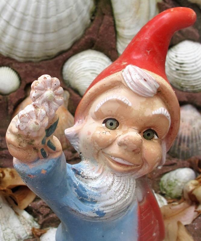 Felder's Gnome