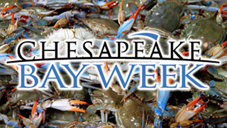 Chesapeake Bay Week Preview
