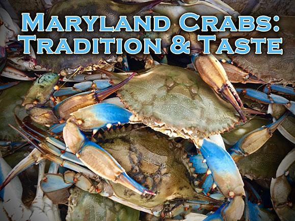 Maryland Crabs: Tradition & Taste