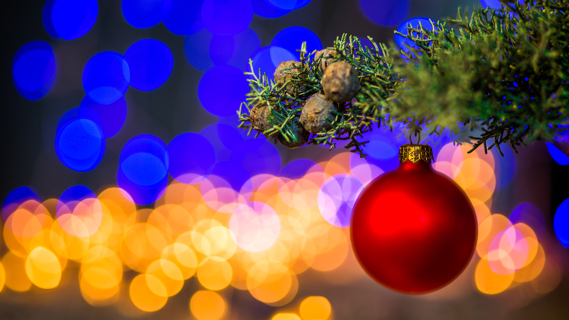 Christmas Roundup 2017: Your daily guide to holiday events