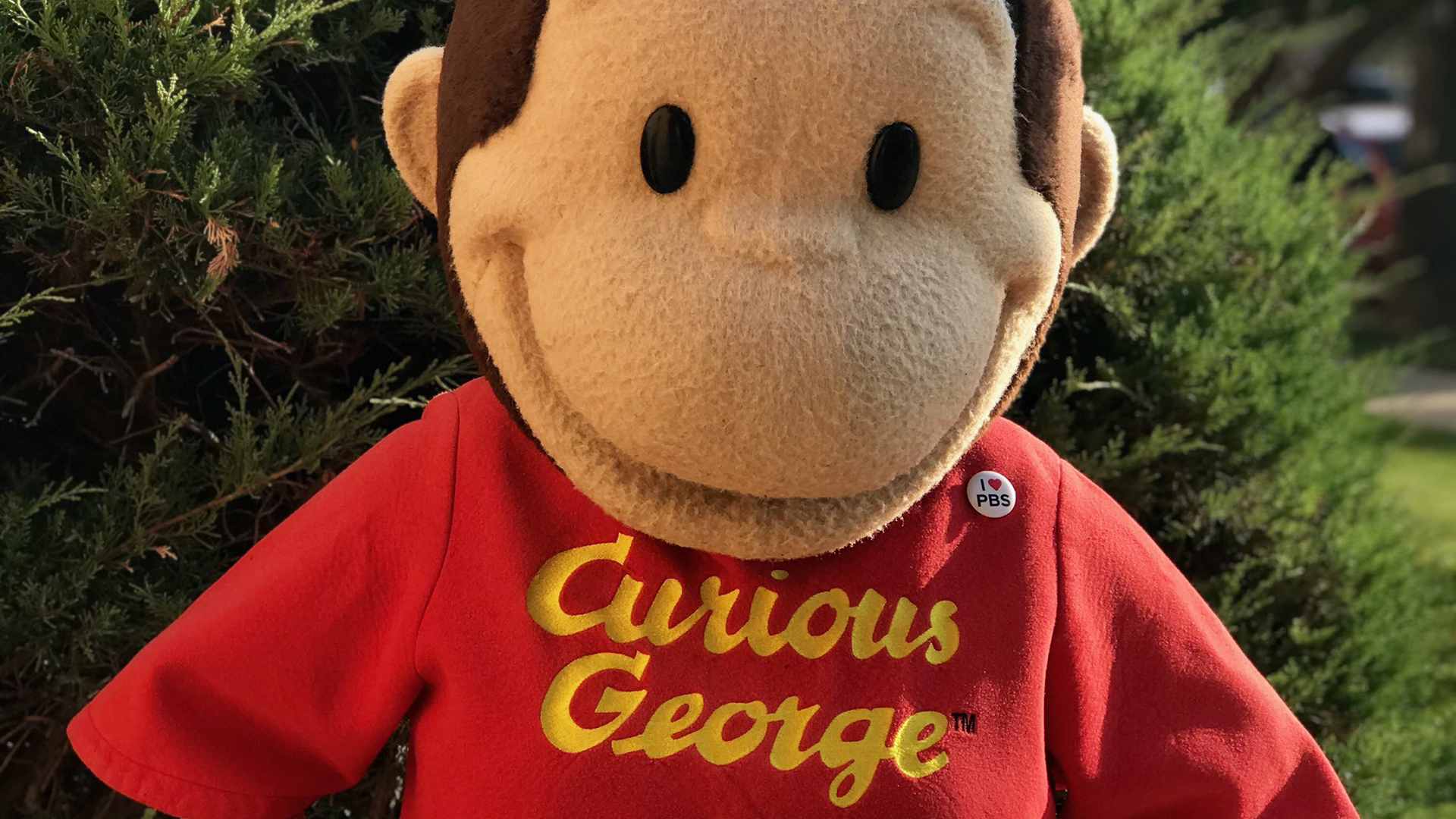 Play Here's Activity Roundup for June 14 to 21, with JuneFest, Curious George, Susan Gibson, Summer Celebration, more