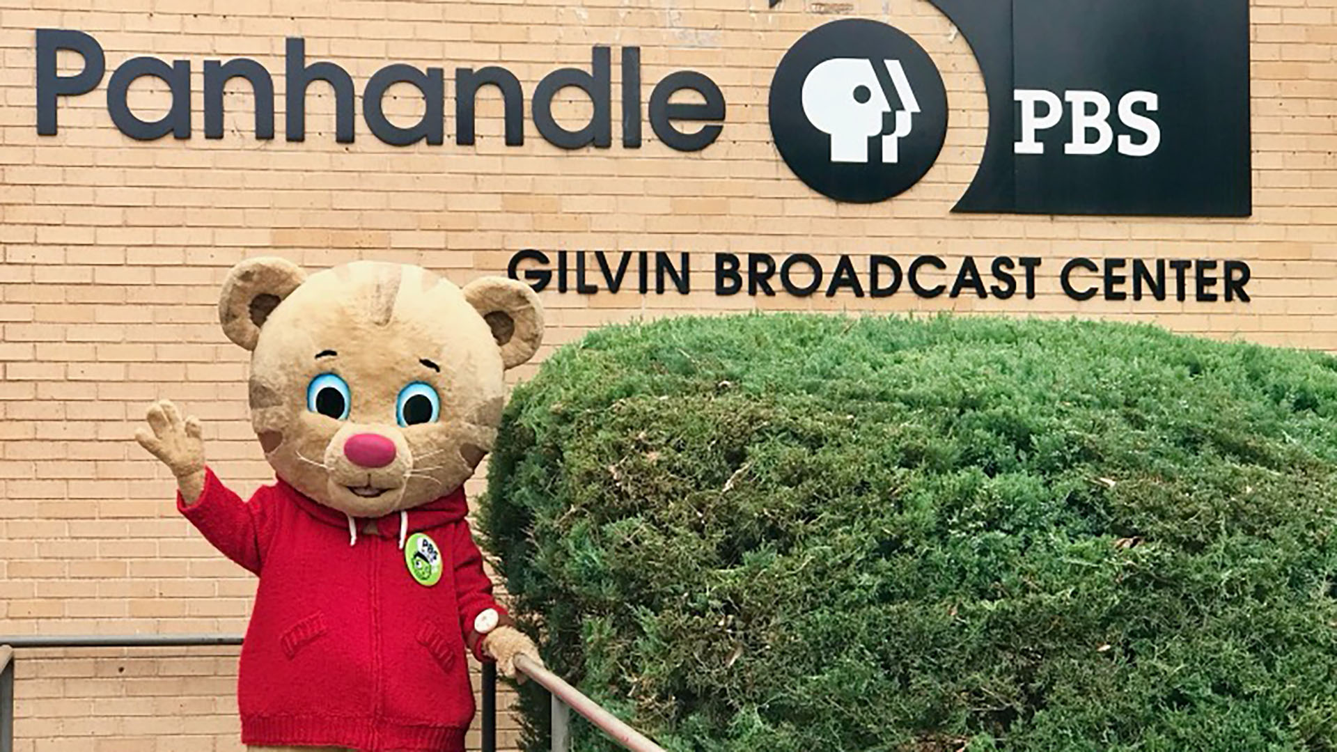Daniel Tiger will return to Panhandle in May