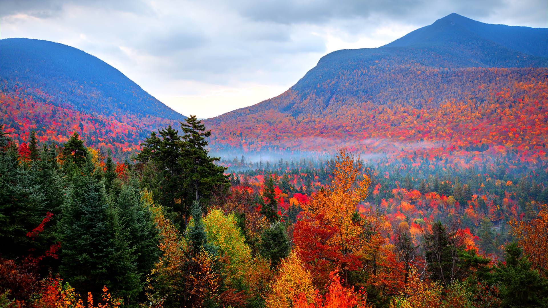 Enjoy the changing of the seasons with 'Autumnwatch — New England'