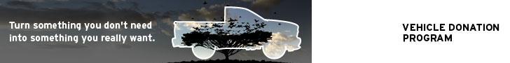 VD-Web_728-truck-nature.jpg