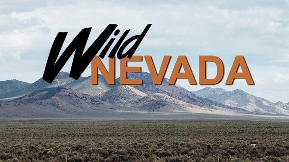Wild Nevada on PBS LearningMedia