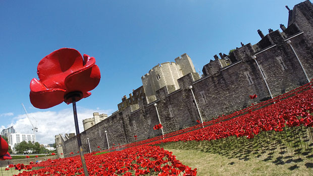 tower-london-poppies8.jpg