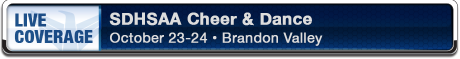 Banner_Web_2015CheerDance_920x118.png
