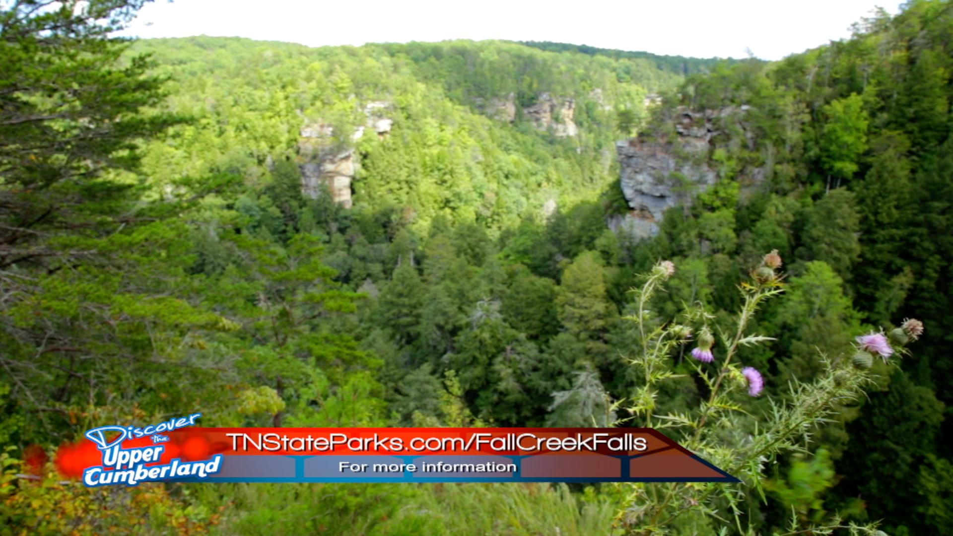 Fall Creek Falls | Van Buren Co.