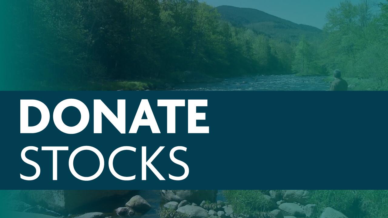Donate Stocks/Securities