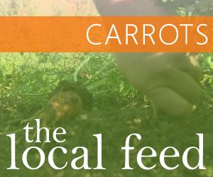 carrots_300x250.jpg