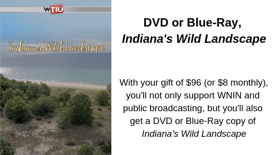 With your gift of $96 (or $8 monthly), you'll not only support WNIN and public broadcasting, but you'll also get a DVD or Blue-Ray copy of Indiana's Wild Landscape.png