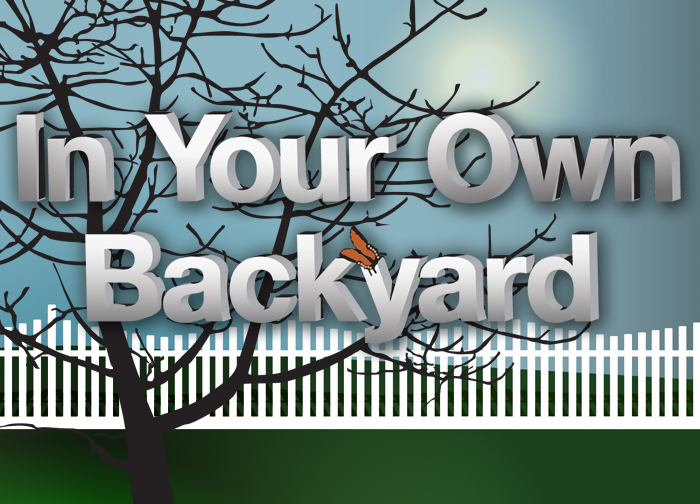In you own backyard.jpeg