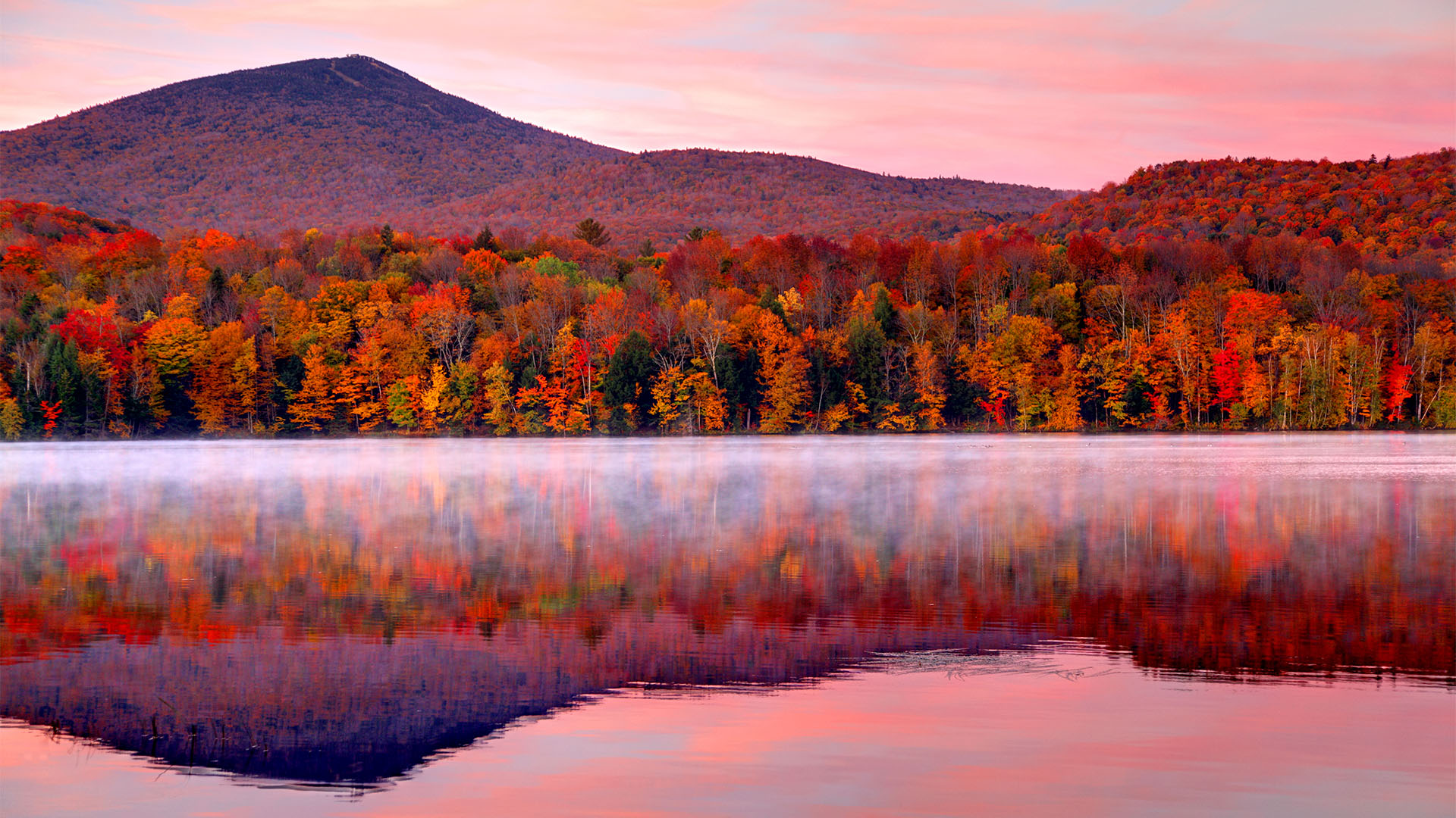 About | Autumnwatch New England | PBS