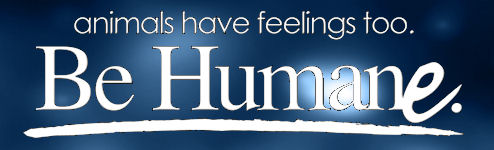 be-humane-logo.jpg