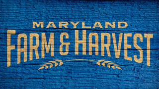 Maryland Farm & Harvest