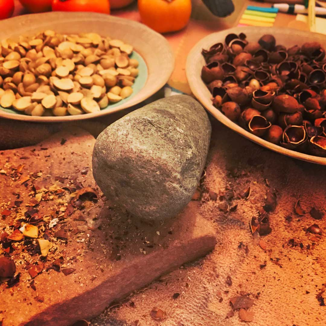Cracking and preparing bay nuts to roast. After roasting, these powerful nuts have the flavor elements of dark chocolate and coffee beans. The energy buzz follows.