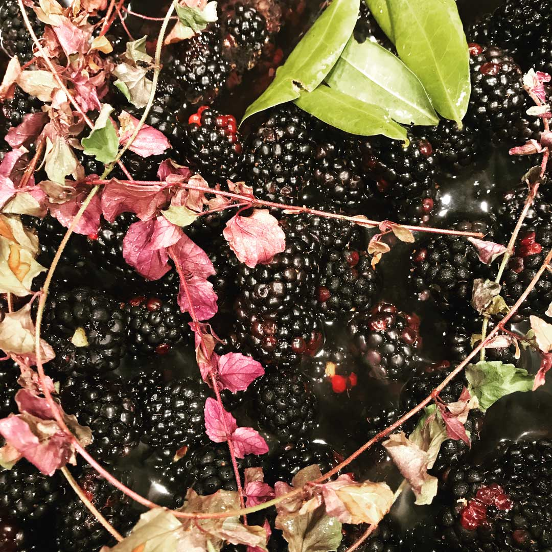 Blackberries slowly cooked down with bay laurel + yerba buena melds flavors of our homeland together in a fragrant sauce that pairs well with duck + venison.