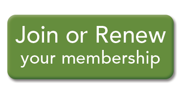 Join or Renew Your Rhode Island PBS Kids Club Membership