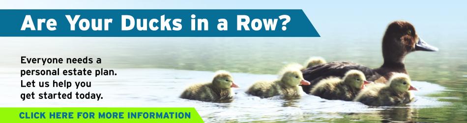 Ducks in a row new 2017.jpg